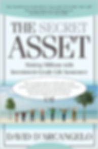 The Secret Asset.jpg
