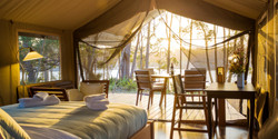 Melaleuca-Safari-Tent-Inside_TANJALAGOONCAMP