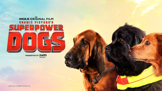 Superpower Dogs Now Playing at the Ontario Science Centre IMAX