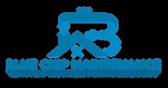 Blue Chip Logo-01.png