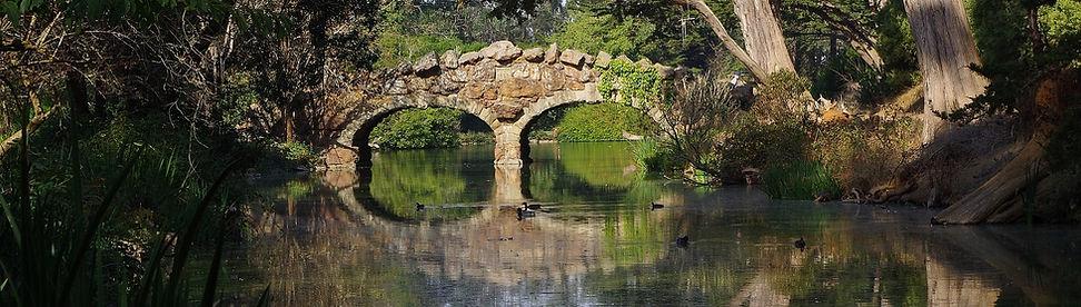 bridge-2875788_1920_bearbeitet.jpg