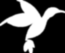 bird_greenbird_white.png
