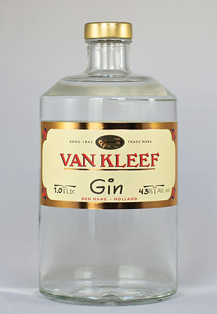 Gin 1.0.jpg