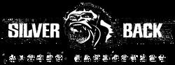 SB_Artist Management_LOGO_Banner_2