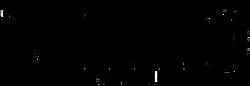 VILLE_Logo_HR