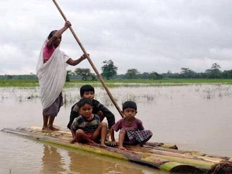 Assam's Struggle for Survival