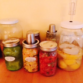Various colorful jars of ferments on wooden counter
