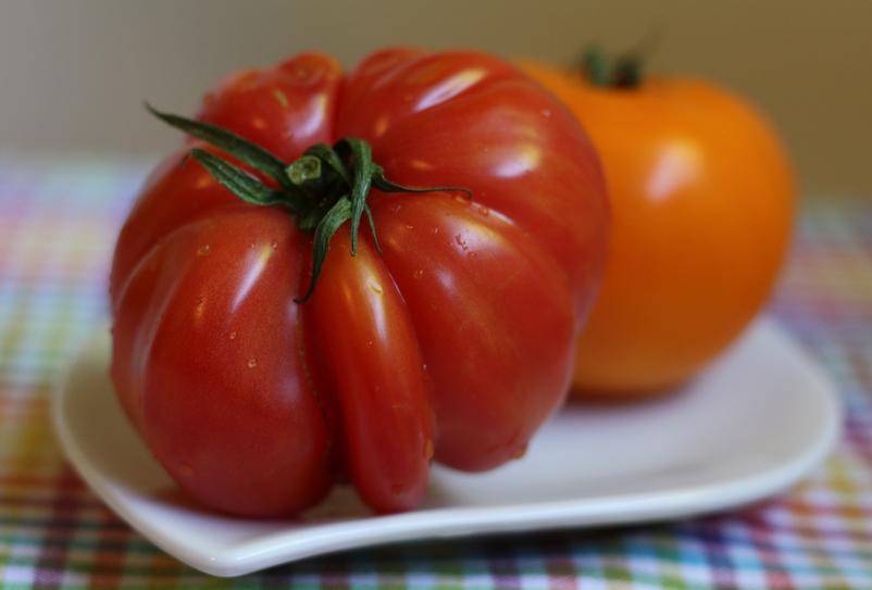 Fresh Red and Orange heirloom tomatoes