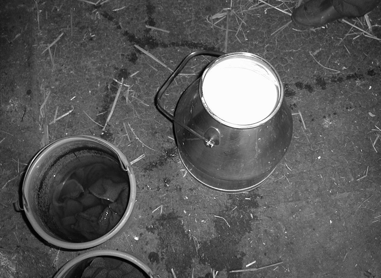 2002. Pro (pots de lait)