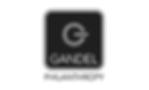 GAN_OL_P_1.png