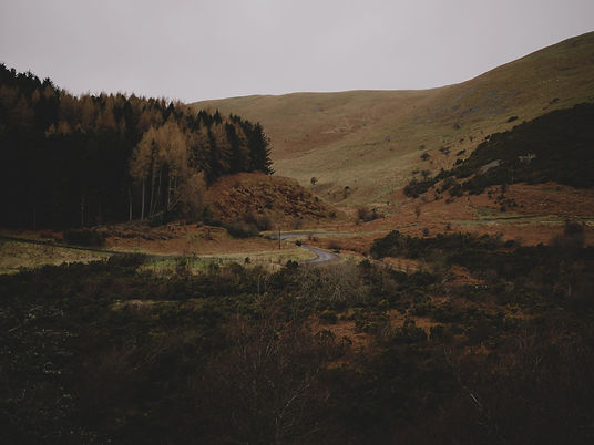 Photograph of a winding road through a green, hilly Northumbrian landscape. Photograph is by Andrew Ridley via Unsplash.
