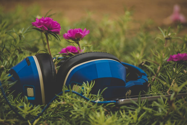 Photograph of a pair of blue and black headphones resting in the grass, with pink flowers behind them. Photograph is by Sai Kiran Anagani via Unsplash.