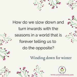 """A cream square with green and pink flowers in opposite corners and the words """"How do we slow down and turn inwards with the seasons in a world that is forever telling us to do the opposite? Winding down for winter"""" in black text."""