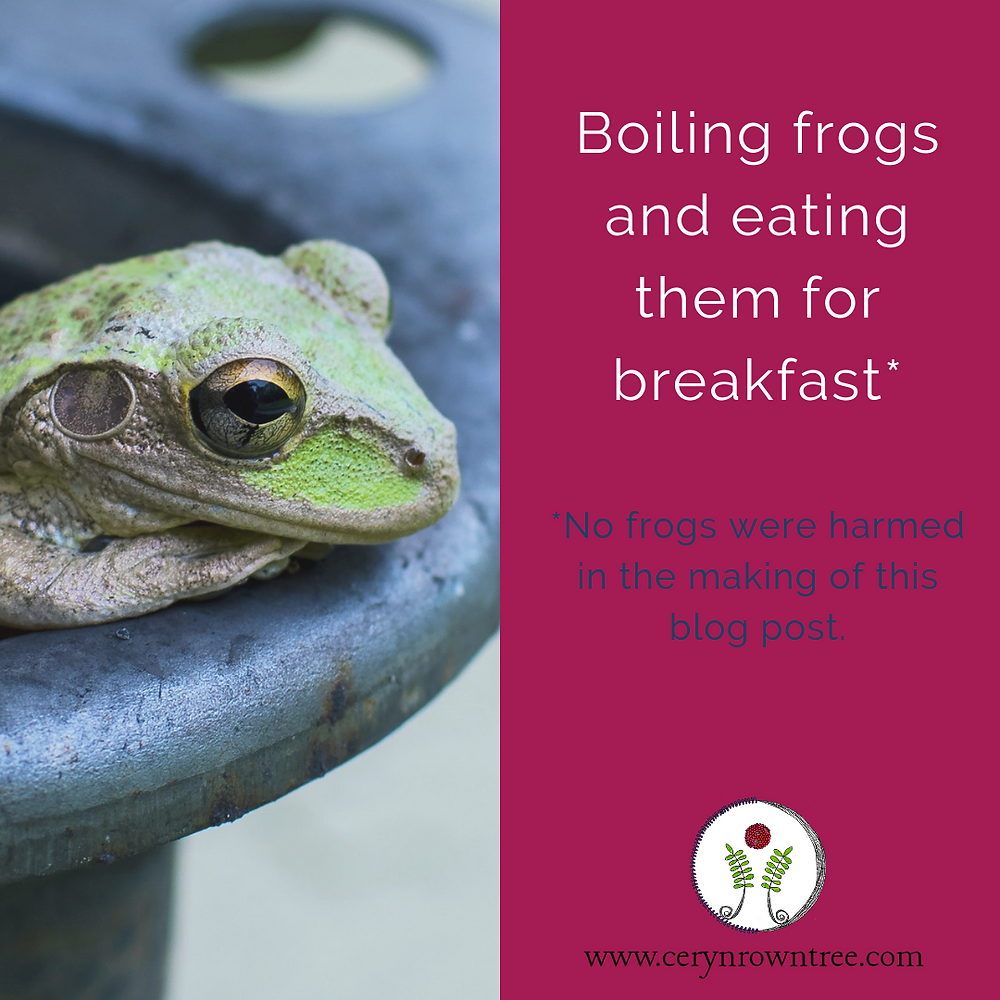 "A square image divided vertically. To the left is an image of a green frog peeking out over the edge of a pot (image courtesy of Ladd Greene via Unsplash); to the right a bright pink box including the words ""boiling frogs and eating them for breakfast"" in white, followed by ""*no frogs were harmed in the making of this blog post"" in blue, and the logo and web address for www.cerynrowntree.com."