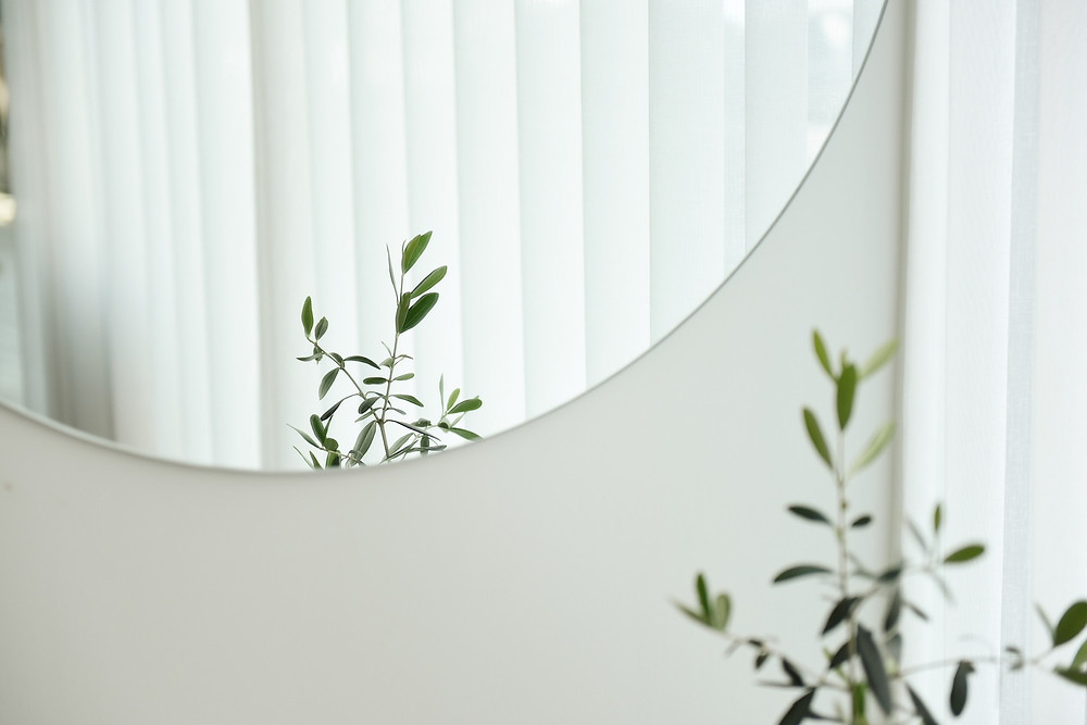 A photograph of a round mirror hung on a white wall. Reflected in the mirror are a plant and a set of window blinds. Photo courtesy of Suhyeon Choi on Unsplash.
