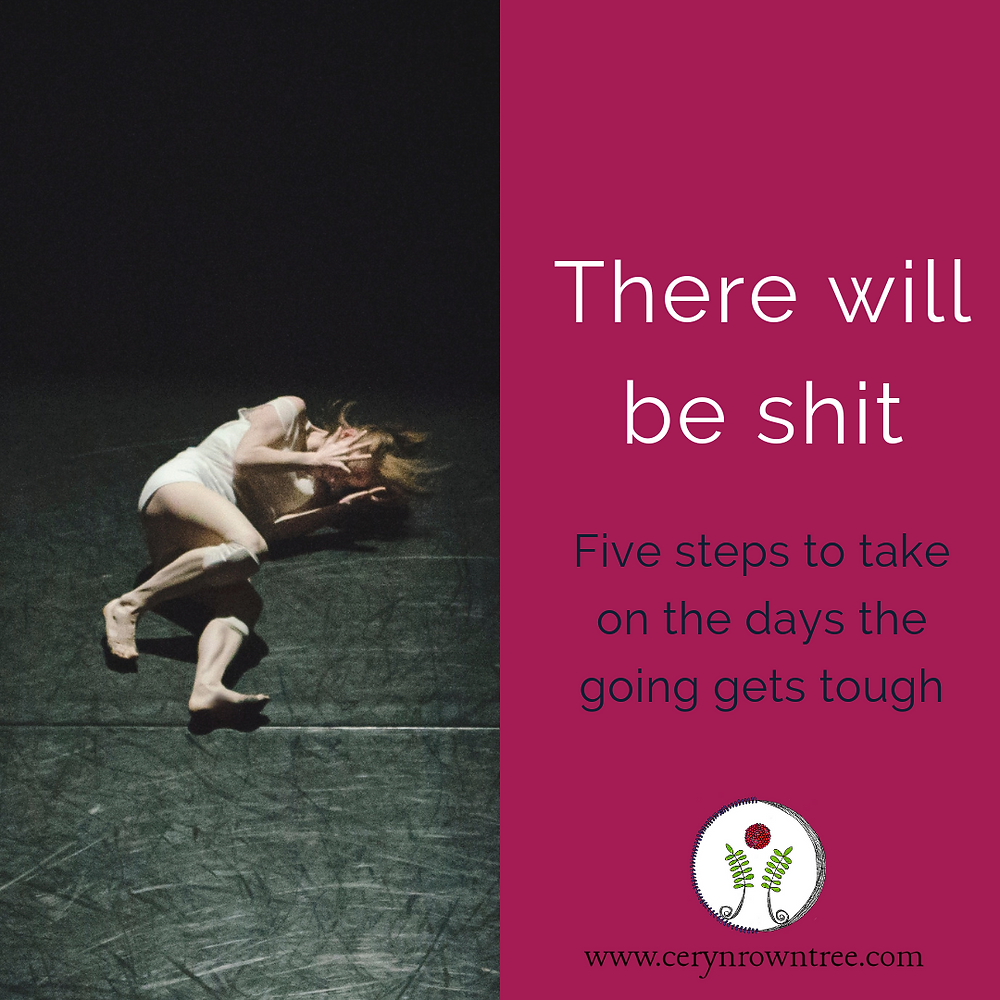 "Image is split in half vertically. To the left is a white woman with red hair and nude coloured clothing lying with her head in her hands on a dark wooden floor. The photo is by Hailey Kean on Unsplash. To the right is a bright pink square containing thw words ""there will be shit"" in white, followed by ""five stepos to take on the days the going gets tough"" in dark blue, and the logo and web address for www.cerynrowntree.com"