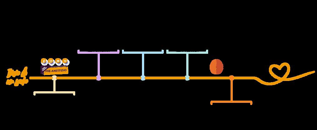 infografico jornada do aluno.png