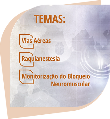 temas workshops