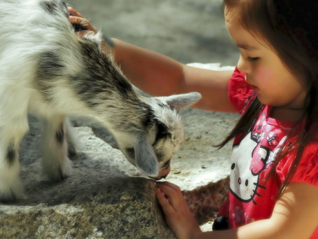 Little Girl and Friend