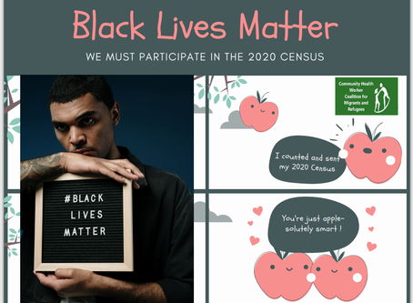 "We  participate in the US census to  support ""Black lives Matter"""