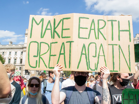 How You Can Take Meaningful Action This Earth Day!