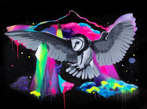 CosmicOwl.II.Vexta.Cosmos.jpg
