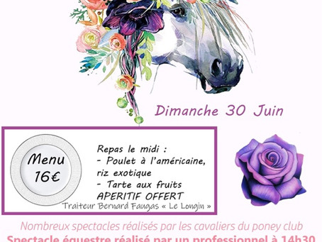 Fête du poney club