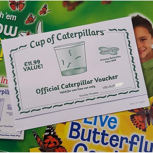 Caterpillar Refill Voucher