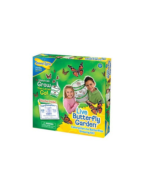 Butterfly Kit Insectlore