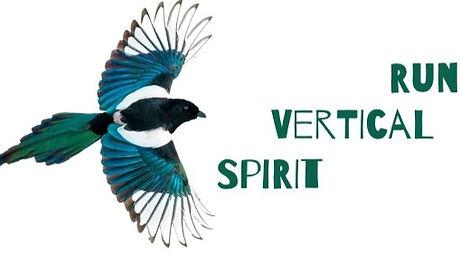 Spirit%2520Vertical%2520Run_edited_edited.jpg