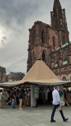 Place du Château Strasbourg