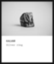 Silver ring / Kalvar