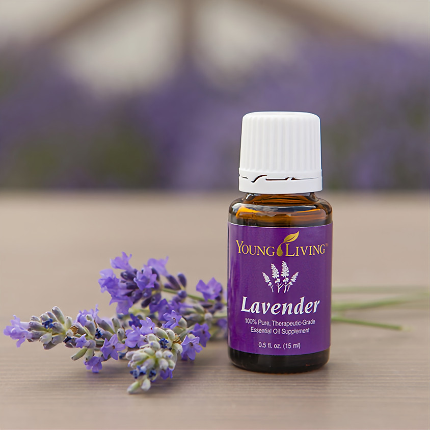 An Introduction to Essential Oils and Animals