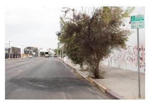 LOS ANGELES RIOTS 2020 .jpg