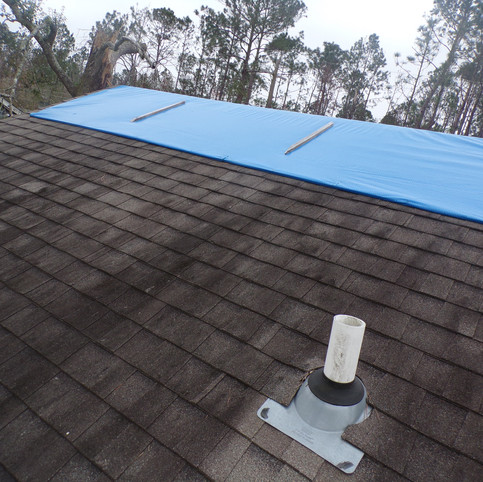 Brian Borel_Before_Pictures_Roof (1).JPG
