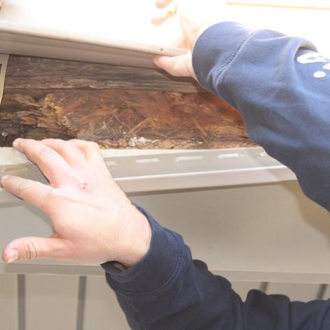Erik Oliver_Left Elevation wood damage (
