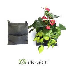 Florafelt-2-Pocket-Panel-Living-Wall-Sys
