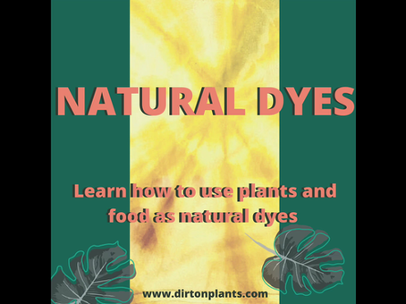 How to Use Plants to Tie Dye