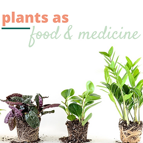 plants as food and medicine