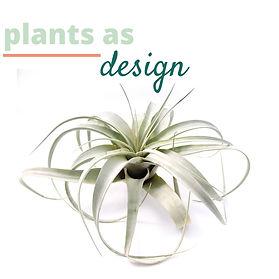 plants as design