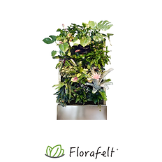 FlorafeltRecirc24-FR24-main-1.png