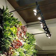 Florafelt-LED-Light-Kit-8-foot-12-lights