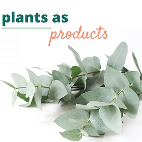 plants as products