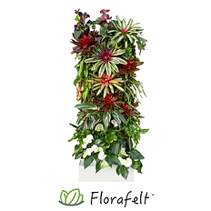 FlorafeltRecirc33-FR33-main.png