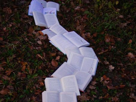 Street Smart or Book Smart?