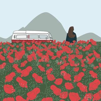 Van, montagne et coquelicots.jpg