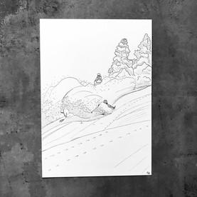 Illustration noir et blanc freeride