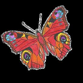 Schmetterling_JK.png