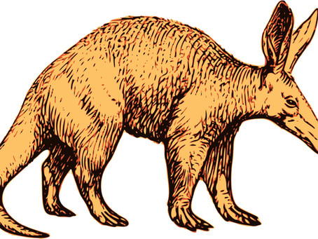 The alphabetical aardvark