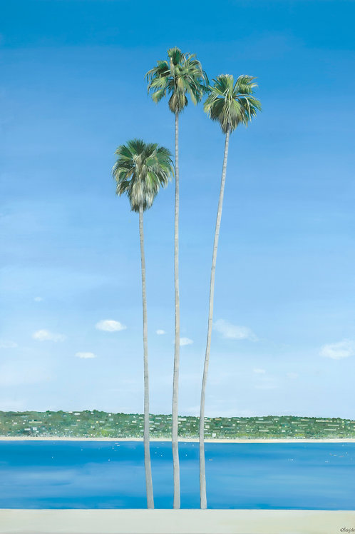 La Jolla Palm Trees Fine Art Print